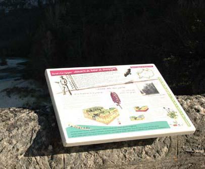 découverte des gorges du Tarn en Lozère